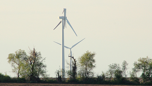A wind turbine near Dexter awaits repairs off Interstate 90 after one of the 37-meter, 14,000-pound blades was likely struck by lightning in April, according to EDF Renewable Energy officials. -- Matt Peterson/matt.peterson@austindailyherald.com