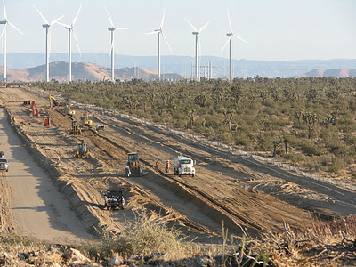Construction crews bulldoze Joshua tree woodland habitat in the western Mojave Desert to make way for more giant wind turbines, within the historic range of the California condor.  A wind farm nearby - LADWP's Pine Tree wind project - is also likely responsible for several golden eagle deaths.