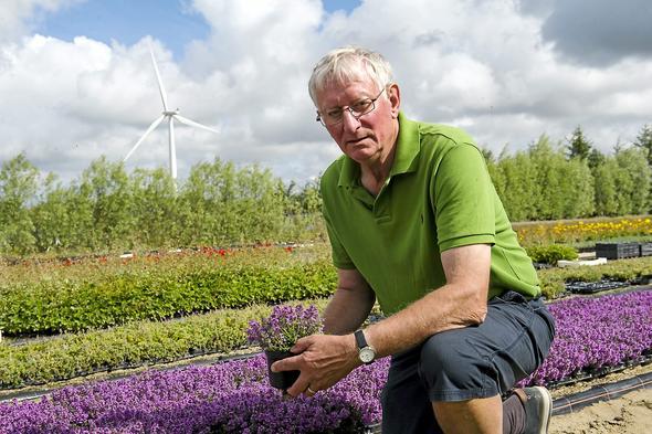 Boye Jensen, owner of Lammefjordens Perennials