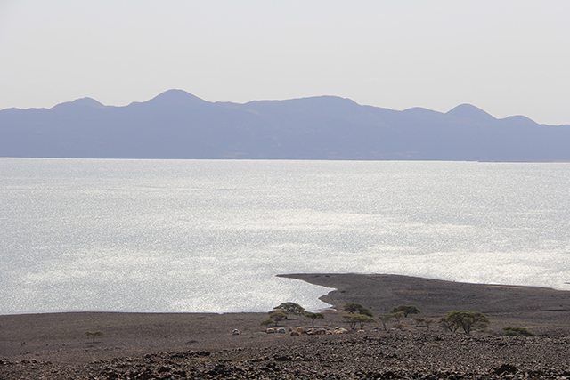 A Turkana village is nestled by the lakeside. (Photo: Chris Williams and Maria Davis)