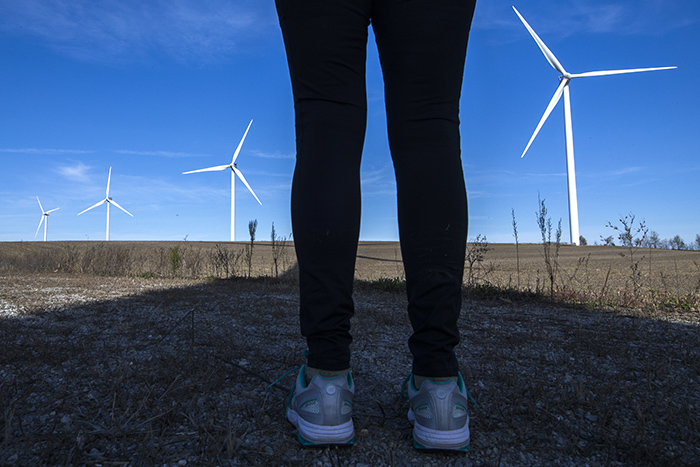 In the shadow of wind farms | Wind Energy News
